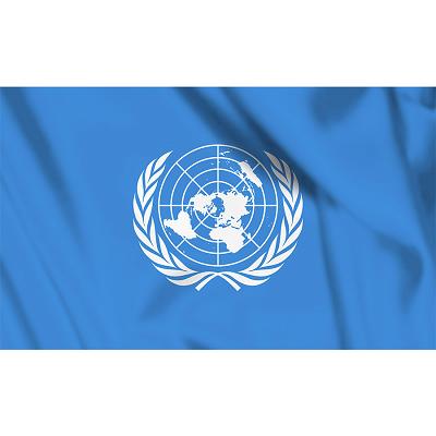 Vlag UN